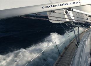 Nautica Cadenote