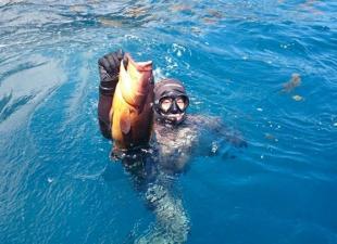 Pesca Sub Lanzarote