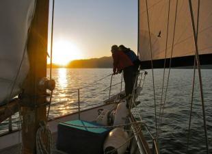 Taz Sailing