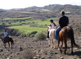 The Black Horse Canarias