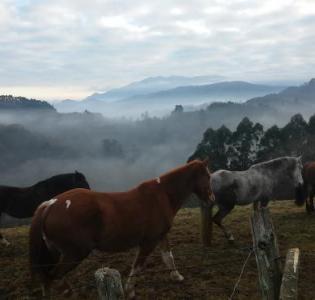 Ofertas ultima hora Asturias