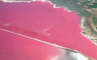 La famosa laguna rosa de Torrevieja
