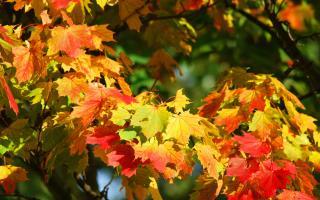 Pueblos con encanto en otoño