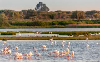 Las 10 maravillas naturales de España