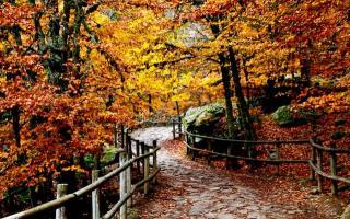 Dónde viajar en otoño por España