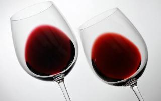 Ruta del Vino Ribera del Duero: una experiencia de enoturismo