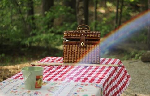 Dónde hacer picnic cerca de Madrid