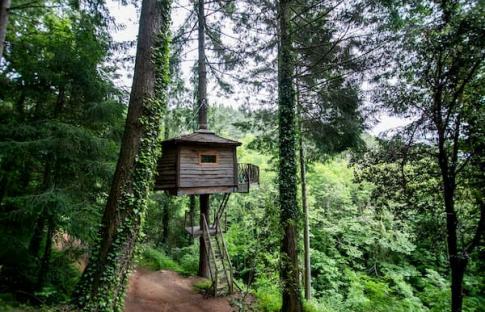 6 cabañas en los árboles para dormir en las alturas