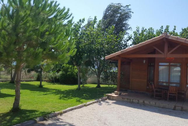 Casa madera playa marenyet regalo naranjas clubrural - La casa de la madera valencia ...
