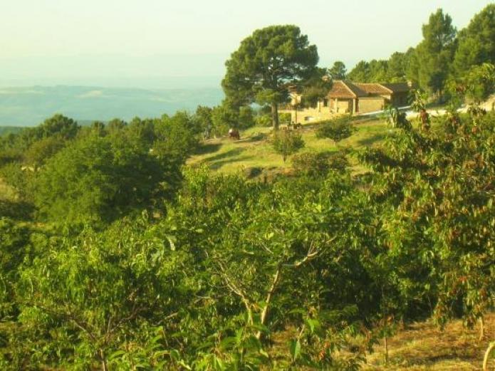 La hacienda de gredos casa rural en guisando vila clubrural - Casa rural guisando ...