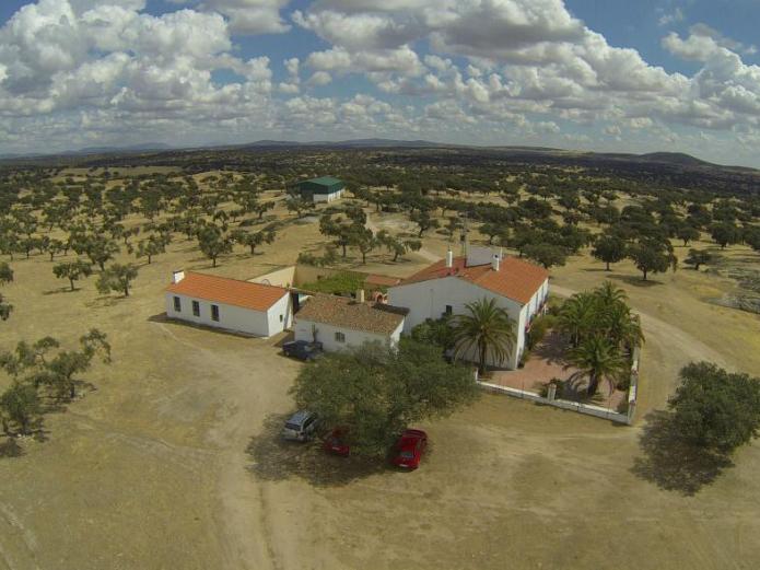 Cortijo la gabrielina casa rural en merida badajoz for Casas rurales en badajoz con piscina