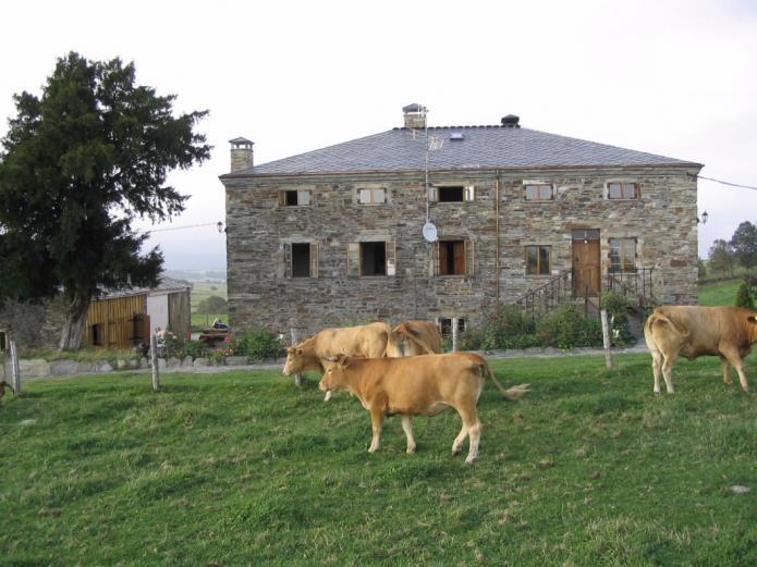 O ventorrillo casa rural en a fonsagrada lugo clubrural - Chimeneas lugo ...