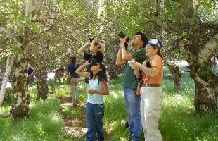 Excursiones para el avistamiento de aves en España