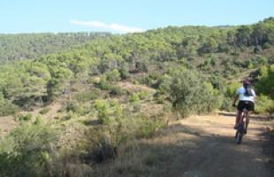 En bicicleta por los Montes de Málaga