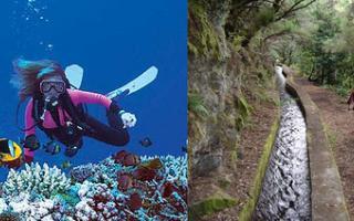 Disfruta el Día de Canarias haciendo deportes de aventura