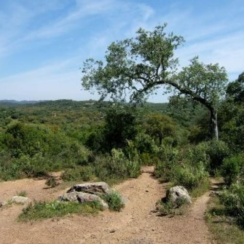Turismo rural en la sierra de hornachuelos clubrural - Vacaciones en la sierra ...