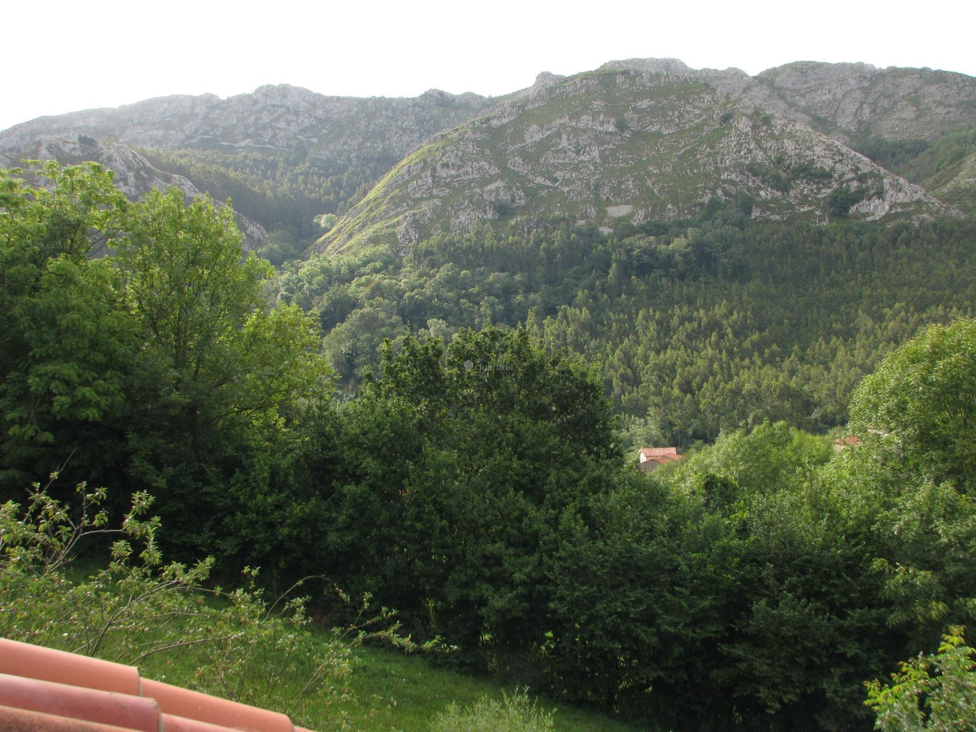 fotos de casa rural posada del alba asturias