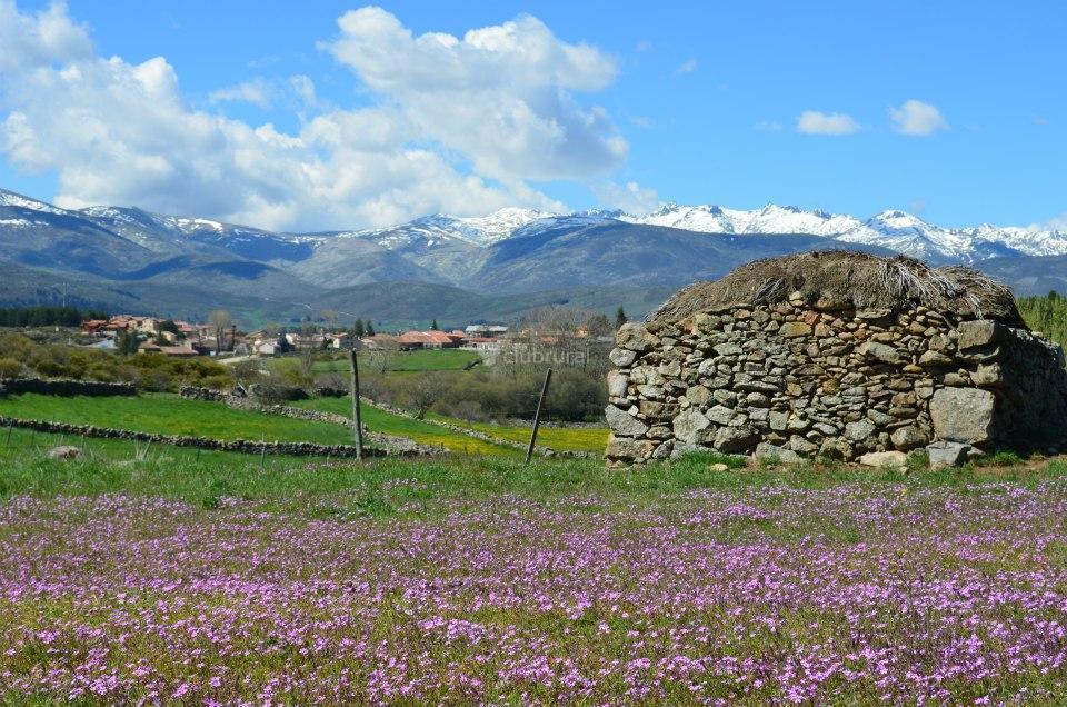 Fotos de casas rurales en gredos vila hoyos del for Casa rural gredos