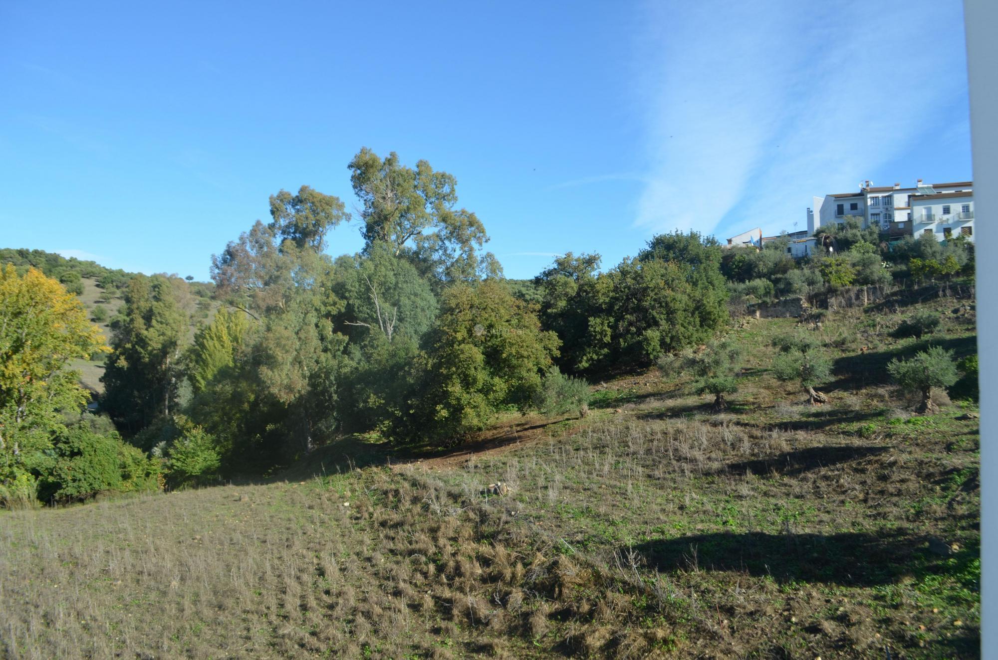 Fotos de casa pinsapo c diz el bosque clubrural - Casa rural el bosque cadiz ...