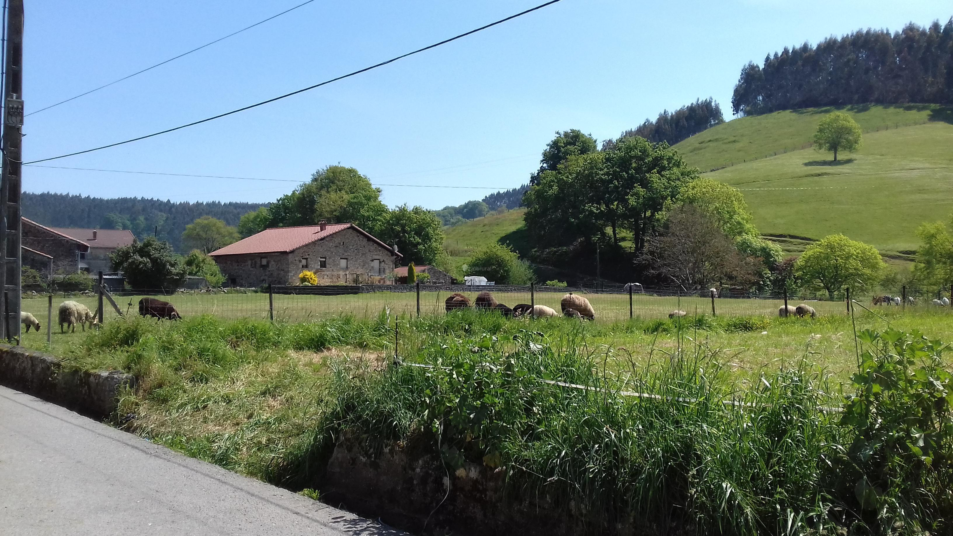 Fotos de casa la mimosa cantabria quijano clubrural - Casa rural puente viesgo ...