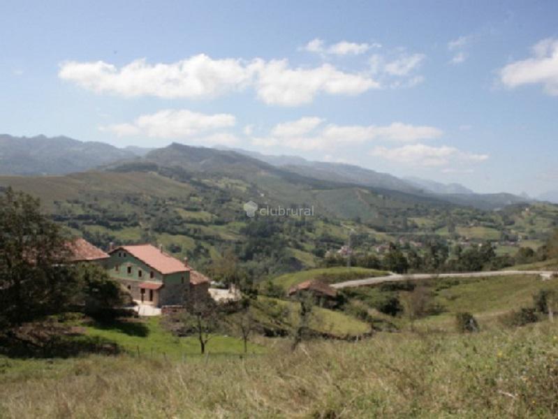 Fotos de las casas de lola cantabria herrerias clubrural - Casas rurales cantabria baratas alquiler integro ...
