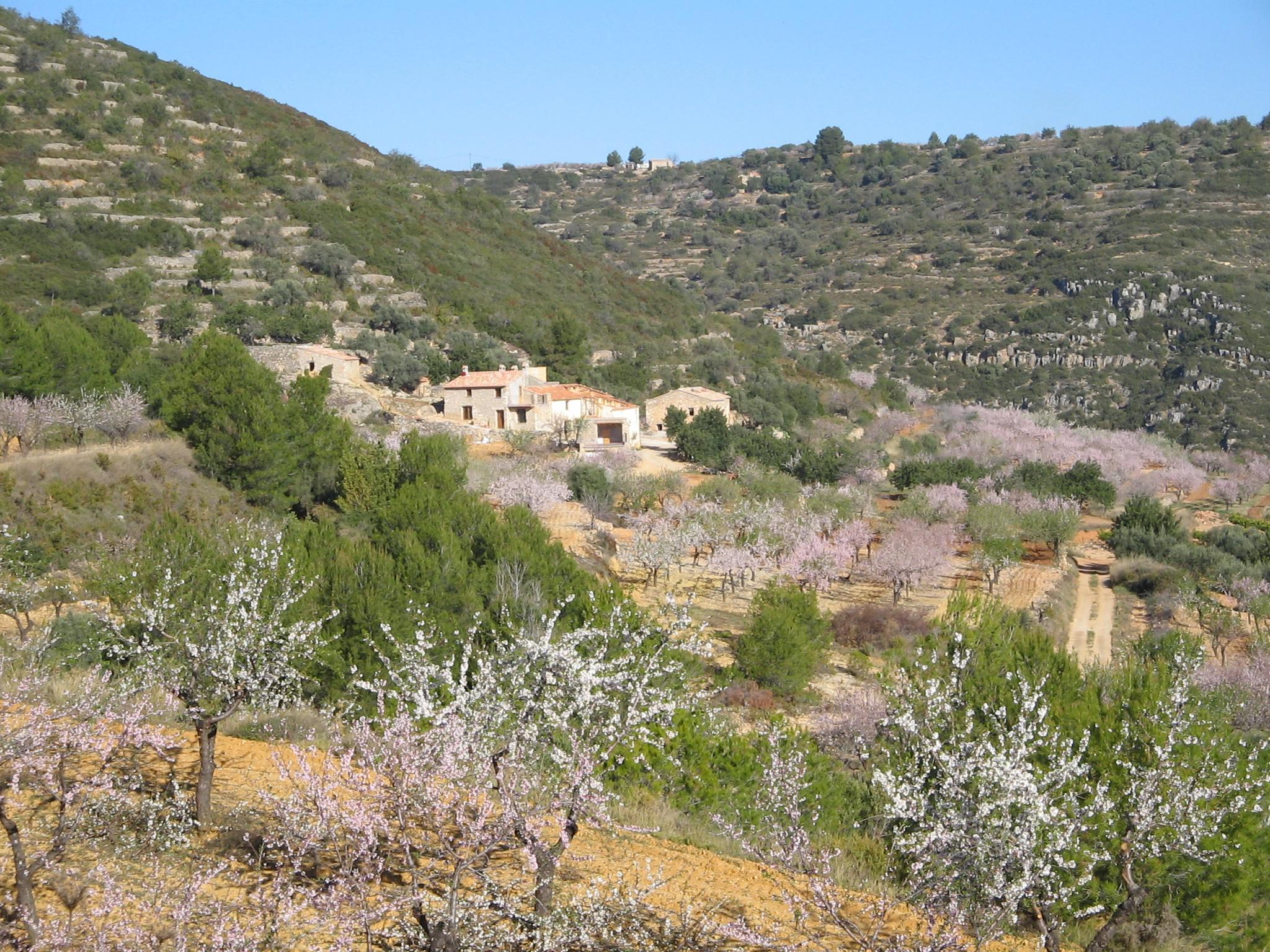 Fotos de la toscana castell n les coves de vinroma clubrural - Casa rural en la toscana ...