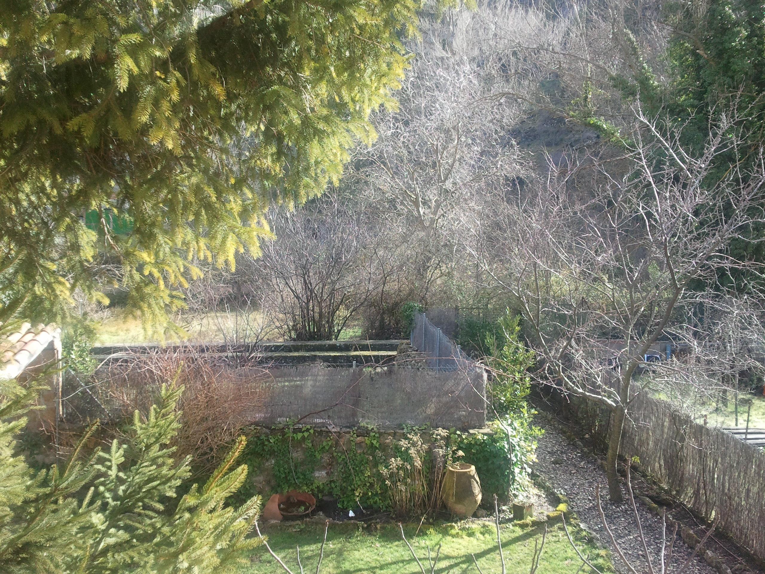 Fotos de el jard n del dulce guadalajara aragosa for Casa rural jardin del desierto tabernas