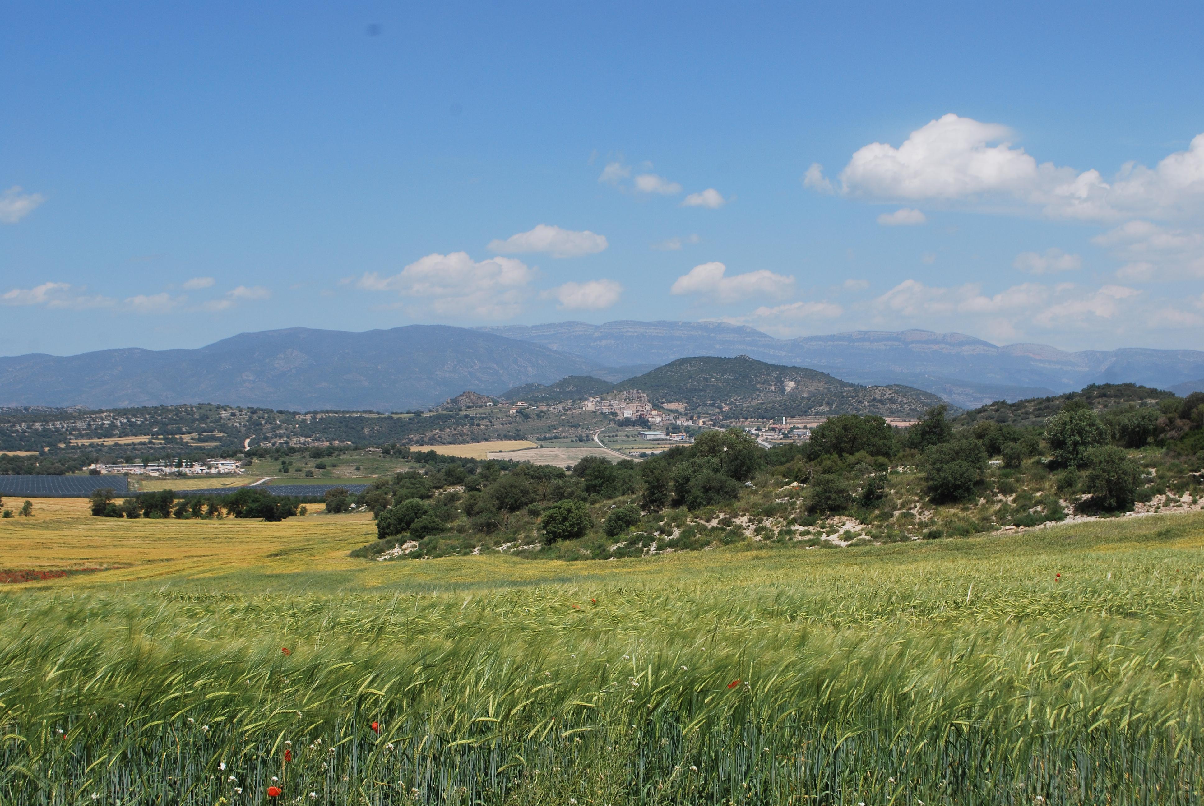 Fotos de Cal Segon : Lleida - Foradada - Clubrural