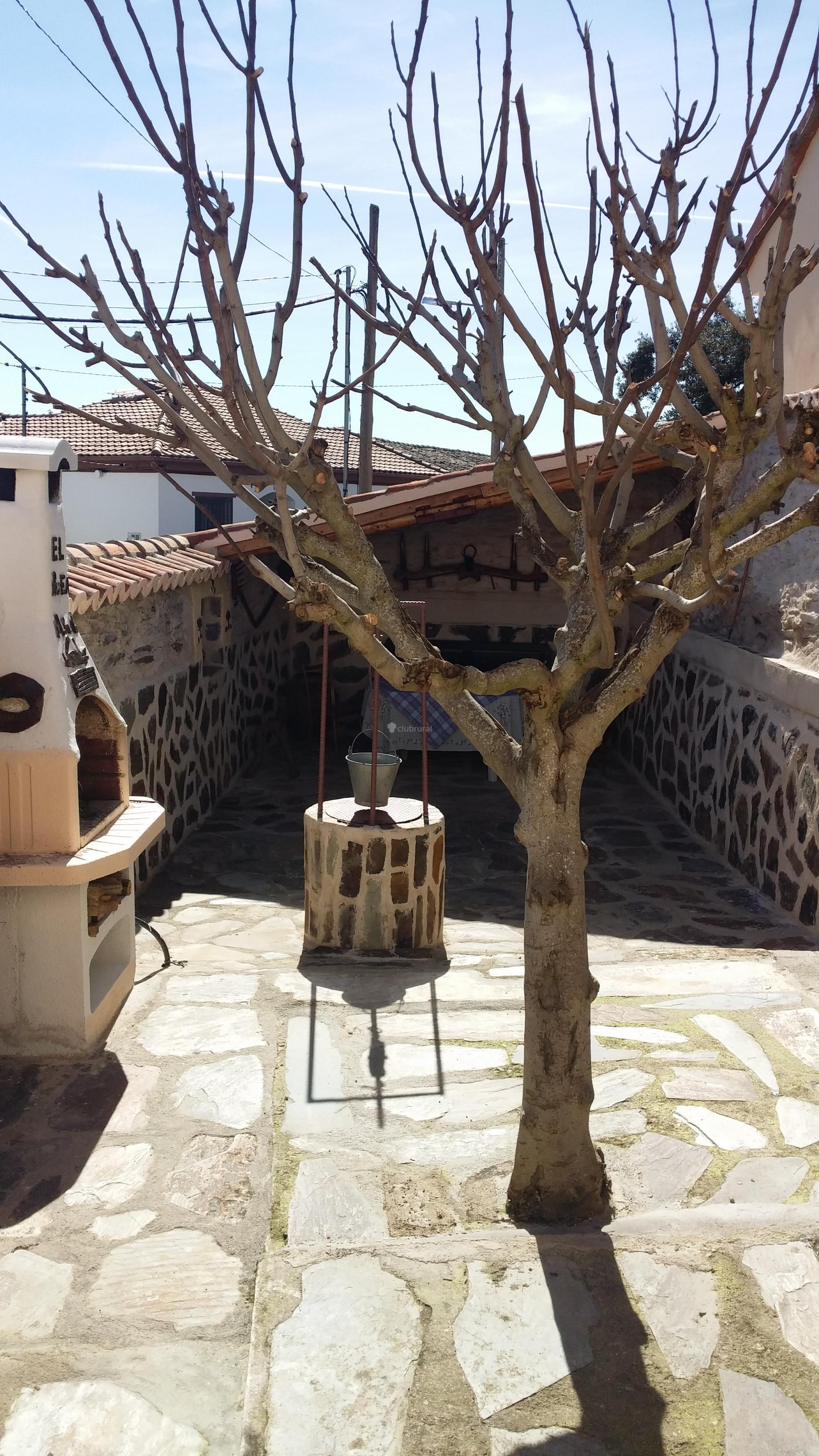 Fotos de casa rural la higuera salamanca aldeavieja de - Casa rural la higuera ...