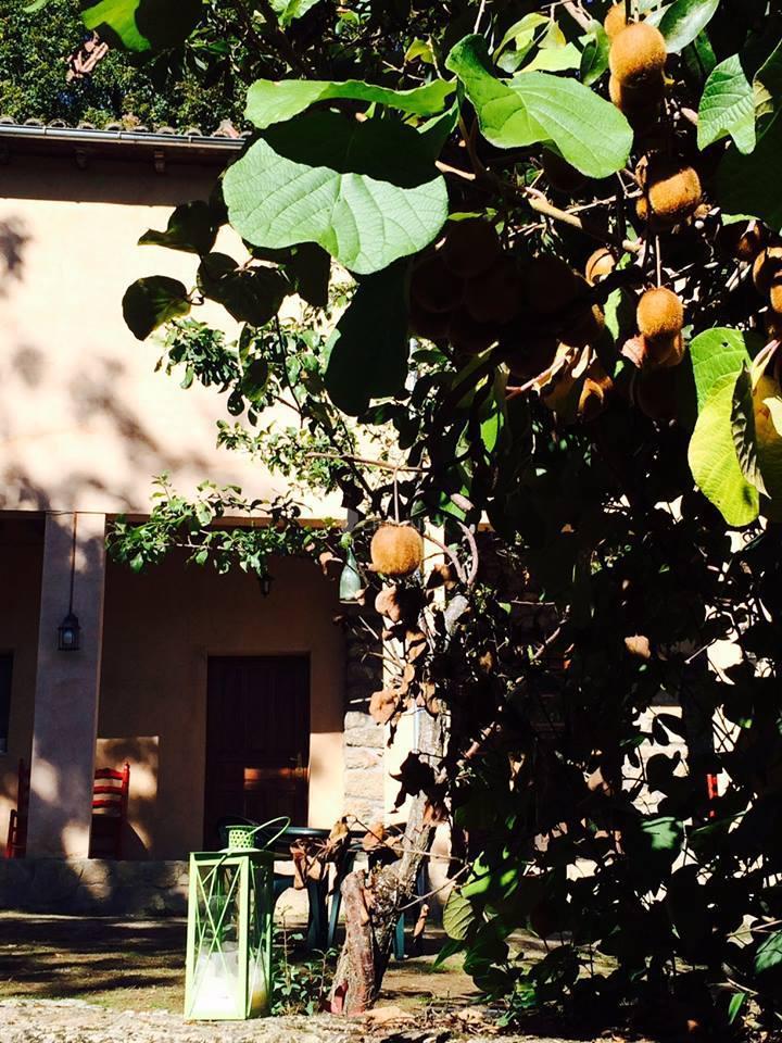 Fotos de el jardin del conde salamanca puerto de bejar clubrural - El jardin del deseo pendientes ...