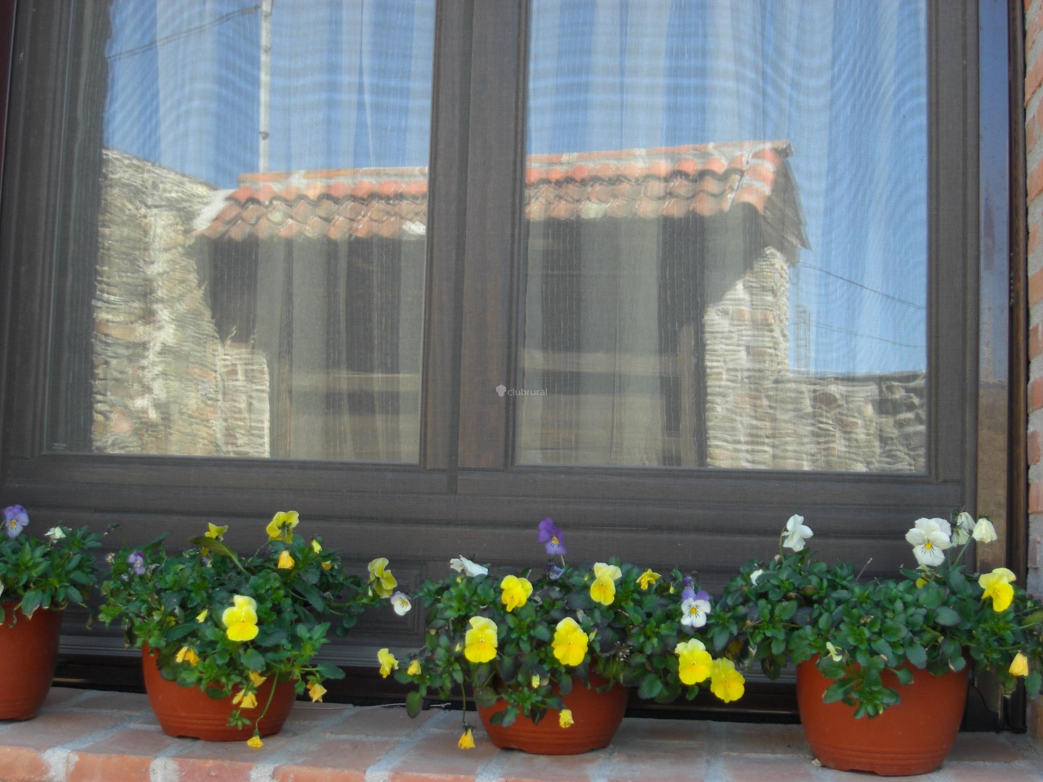 Fotos De El Oasis Segovia Miguela Ez Clubrural # Muebles Oasis Caseros